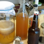 The Zero-Waste Chef and the art of fermentation