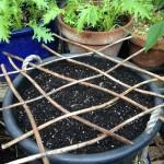 Zero Waste Week: Reuse cottage garden style